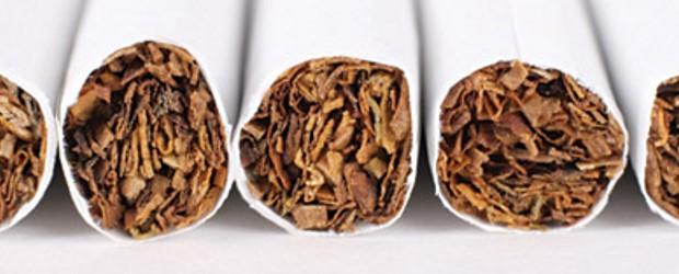 De distributie van rookwaren is onze specialiteit. Wij beschikken over een ruim assortiment sigaretten, tabak, sigaren en cigarillo's. Naast de snel roterende, internationale en nationale merken, kunt u bij ons ook terecht voor meer specifieke, regionale producten. Verder bieden wij...